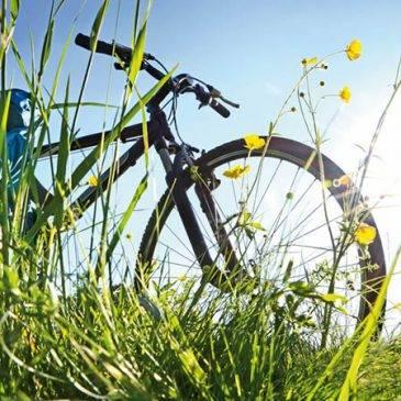 Radfahren oder Fietsen?