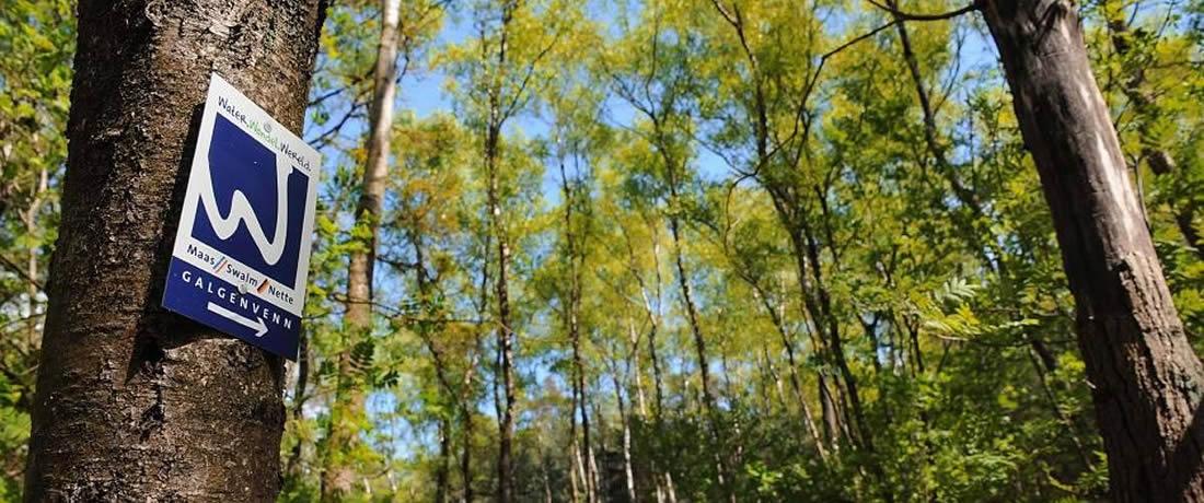 Ausflug im Naturpark Schwalm-Nette